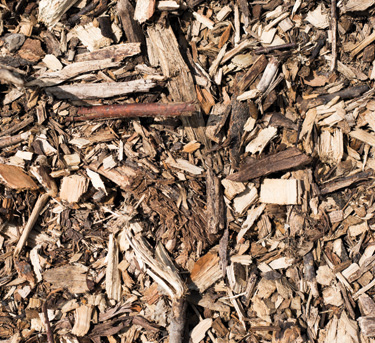 Picture of the Mulch